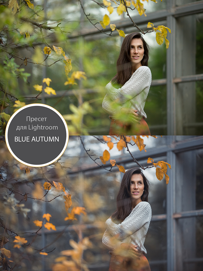 "Пресет для Lightroom ""blue autunm"""