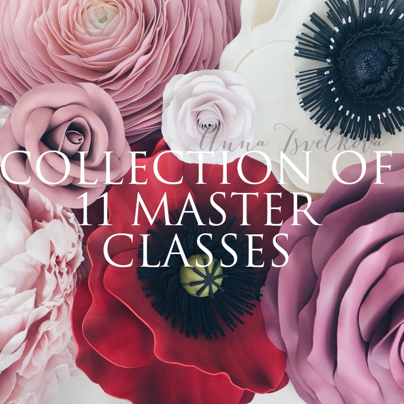 "Set of master classes ""11 video tutorials"" 2017"