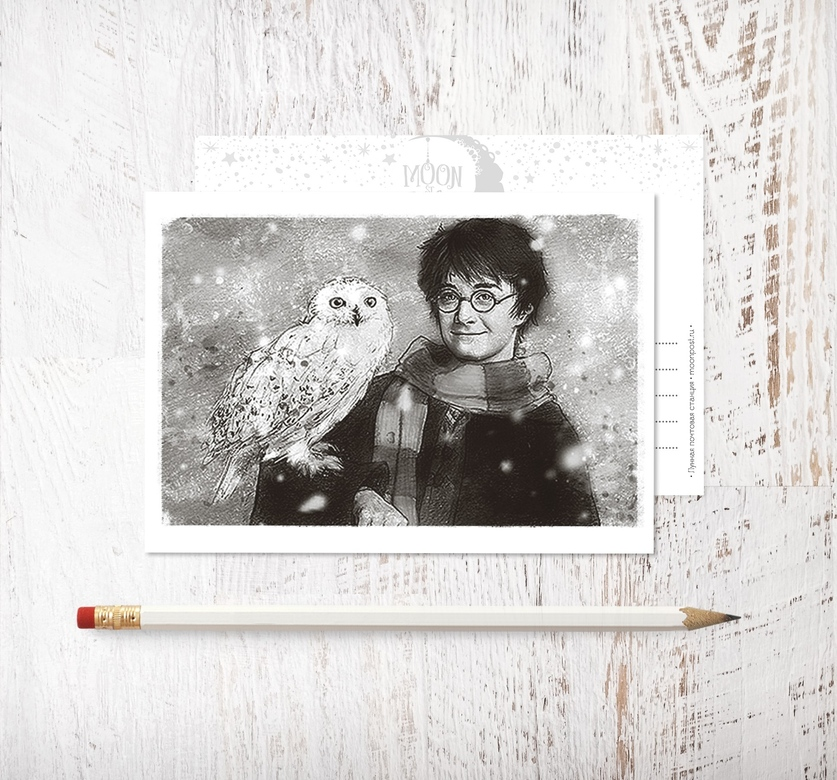 «Harry and Hedwig»