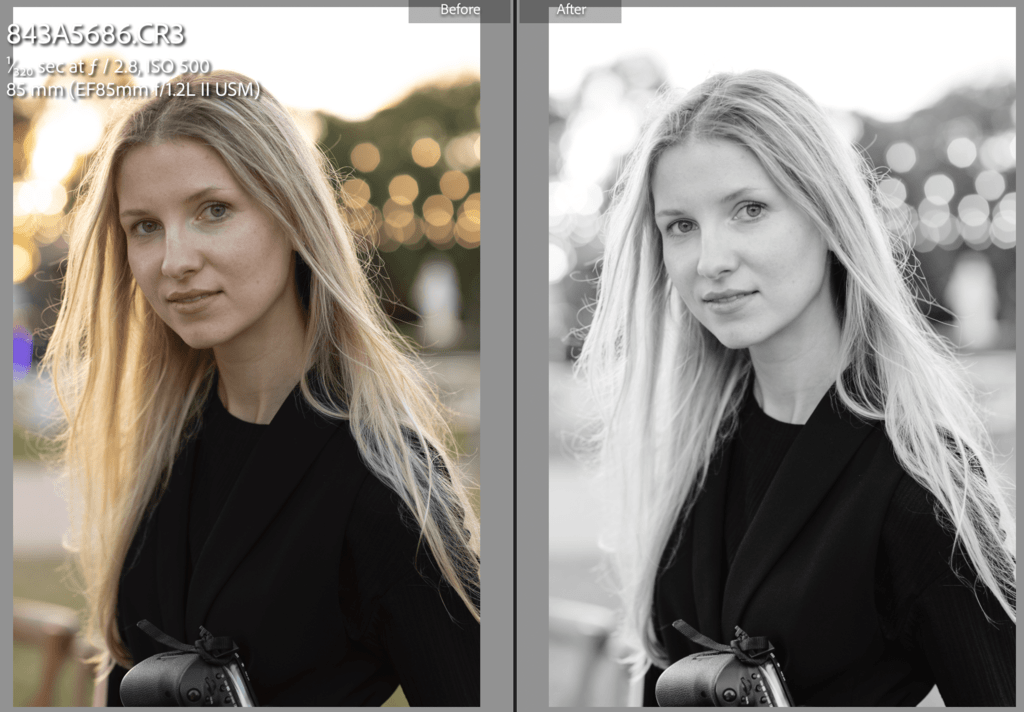 Fine Art Portrait - 3 Lightroom Presents