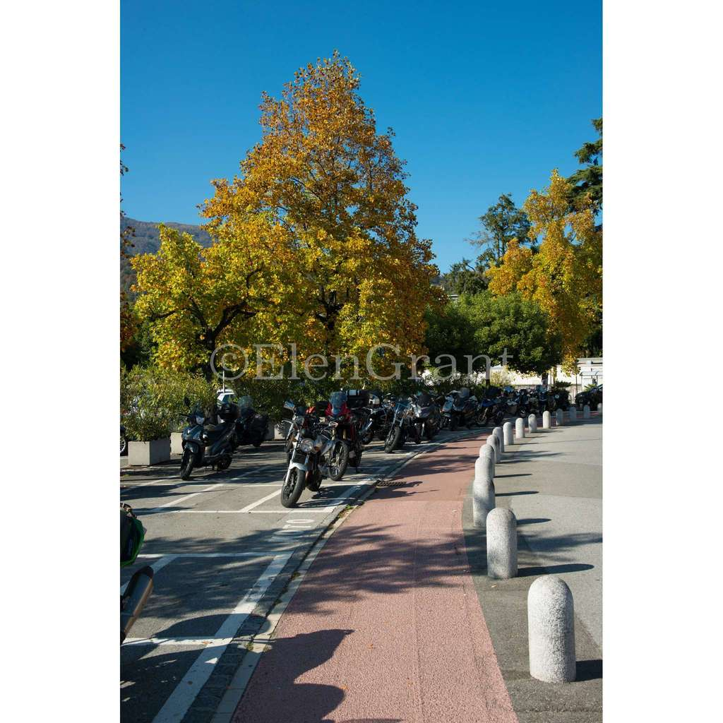 Golden autumn in Ascona