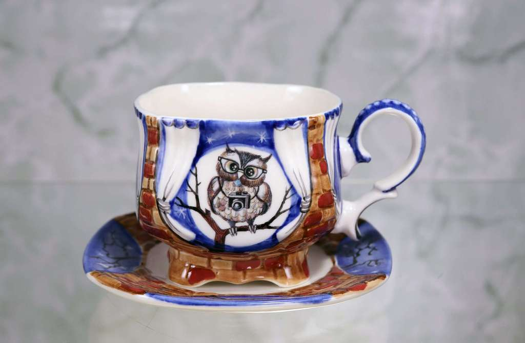 "Handmade porcelain tea cup and saucer ""Owl with camera. Night"""